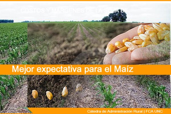 Mejora la expectativa para el maíz