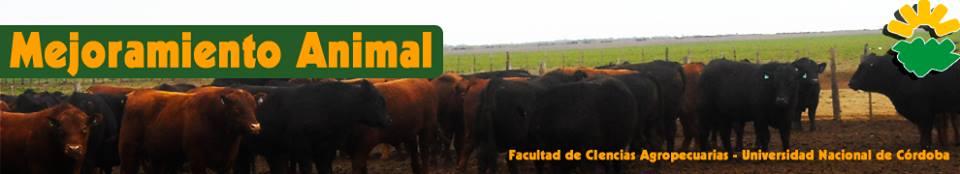 CABAÑA ANGUS.  FCA-UNC