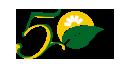 Logo Cincuentenario FCA
